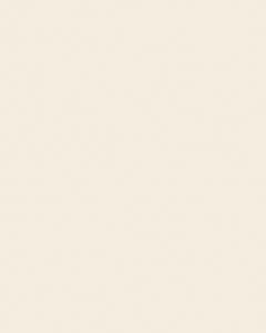 béžová creme U216 ST9 Egger